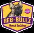 French Bulldogs In Ohio